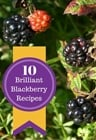 Blackberry recipes - Eco Gites