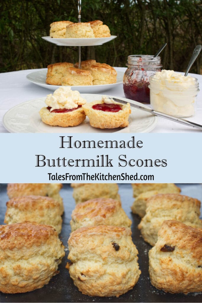 Two images, first image is a cream tea set out on a table outdoors - jam, clotted cream and a scone cut in half spread with jam and cream. Second image is of a batch of freshly baked scones cooling on a rack.
