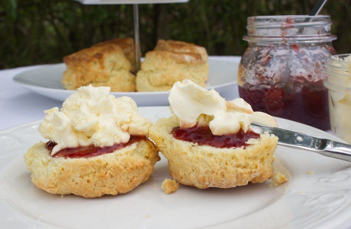 Scones with jam and clotted cream on a tea plate. A pot of jam and cream in the background.