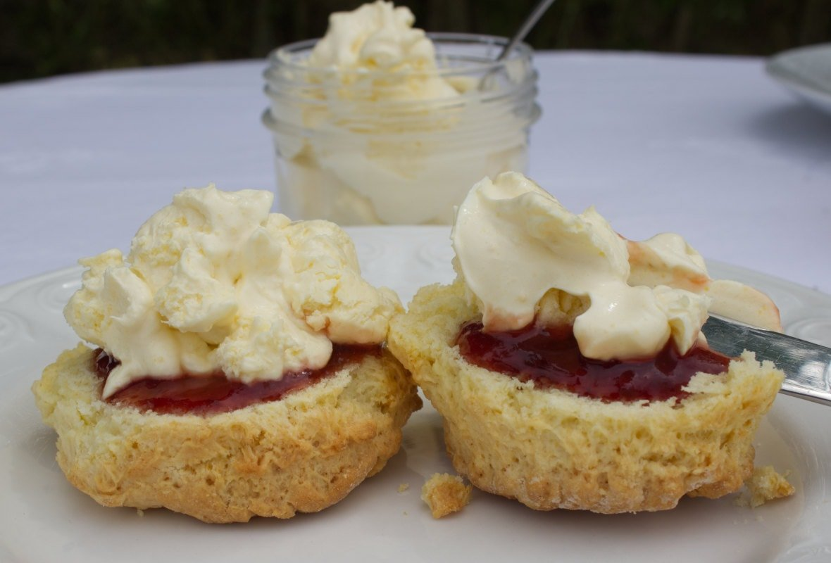 Split scone spread with cream and butter with a pot of homemade clotted cream in the background.
