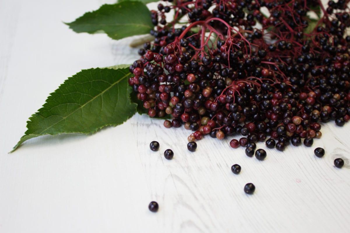 Elderberries on table