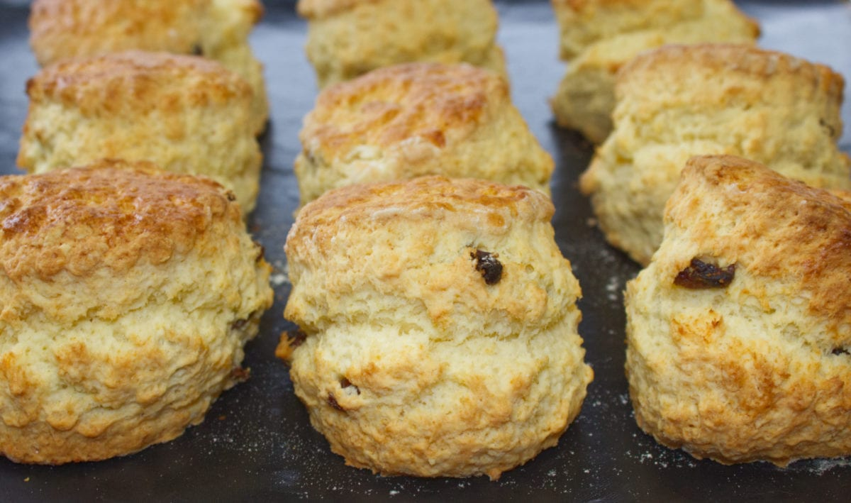 Fresh from the oven, a batch of Homemade Buttermilk Scones on a baking tray